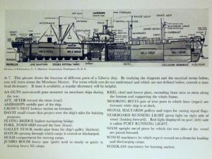 Figure 2: Cross-Section of a Liberty Cargo Ship.
